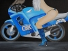 Honda CBR 80x60cm